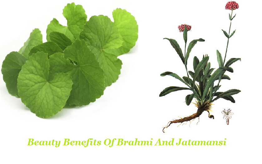Beauty Benefits Of Brahmi And Jatamansi