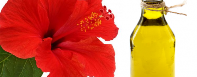 How To Use Hibiscus Flower For Hair Mylifenstylein