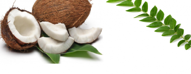 Diy Coconut And Curry Leaves Cream For Healthier And Shinier Hair